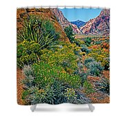 Red Rock Park Spring Flowers Shower Curtain