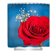 Red Rose And Baby Breath Shower Curtain