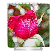 Red Rose Bud Shower Curtain