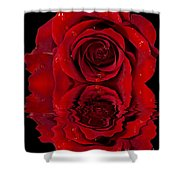 Red Rose Dew Shower Curtain