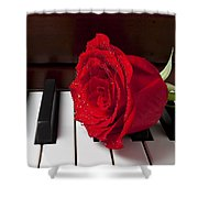 Red Rose On Piano Shower Curtain