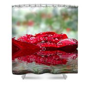 Red Rose Reflections Shower Curtain