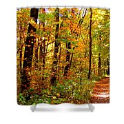 Red Run Trail Shower Curtain by Ed Smith