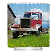 Red Rusted Semi Shower Curtain