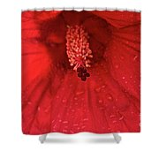 Red Saturation Point Shower Curtain