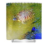 Red Sliders Shower Curtain