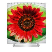 Red Sun Flower Shower Curtain