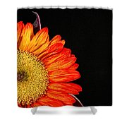 Red Sunflower IIi Shower Curtain