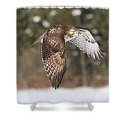 Red Tailed Take-off Shower Curtain