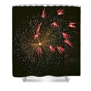 Red Tails Shower Curtain