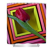 Red Tulip In Box Shower Curtain