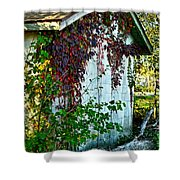 Red Vine Shed Shower Curtain