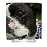 Red White And Boston Shower Curtain