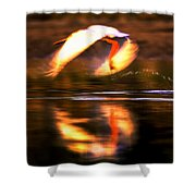 Red White Reflection Shower Curtain