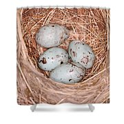 Red-winged Blackbird Nest Shower Curtain