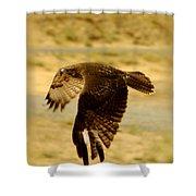 Redtail Flight Shower Curtain by Donna Blackhall
