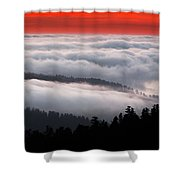 Redwood Clouds Shower Curtain