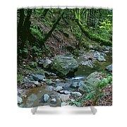 Redwood Creek Art Shower Curtain