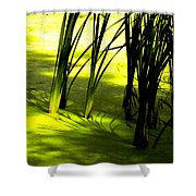 Reeds In Pond Shower Curtain