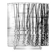 Reeds On The Turtle Flambeau Flowage Shower Curtain