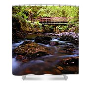 Reelig Grotto  Shower Curtain