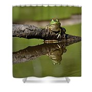 Reflecktafrog Shower Curtain