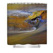 Reflected Autumn Color Shower Curtain