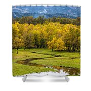 Reflected Seasons Shower Curtain