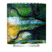 Reflected Tree In Pastel Landscape Shower Curtain