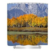 Reflection At Oxbow Bend Shower Curtain