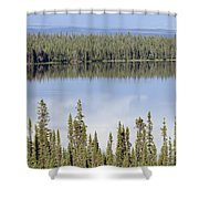 Reflection In Willow Lake Near Copper Shower Curtain