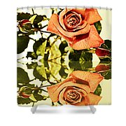 Reflection Of A Warm Rose Shower Curtain