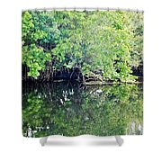 Reflection On The North Fork River Shower Curtain
