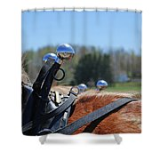 Reflections  1604 Shower Curtain