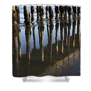 Reflections Avila Beach California Shower Curtain
