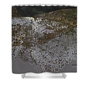 Reflections Of A Lacy Leaf Shower Curtain