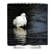 Reflections Of An Egret  Shower Curtain