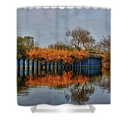 Reflections On Blue Shower Curtain