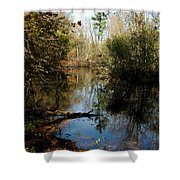 Reflective River Thoughts Shower Curtain