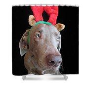 Reindeer Doggie Shower Curtain