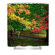 Reno Park - Autumn Shower Curtain