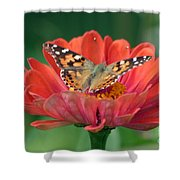 Resting Area Shower Curtain