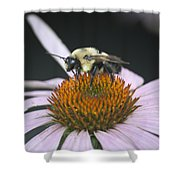 Resting Bee Squared Shower Curtain