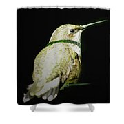 Resting For Migration Shower Curtain