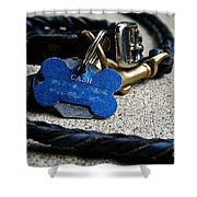 Rewards Shower Curtain