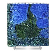 Rhapsody Of Colors 47 Shower Curtain
