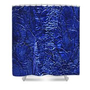 Rhapsody Of Colors 50 Shower Curtain