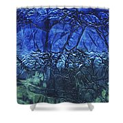 Rhapsody Of Colors 65 Shower Curtain