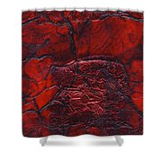 Rhapsody Of Colors 68 Shower Curtain