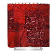 Rhapsody Of Colors 70 Shower Curtain